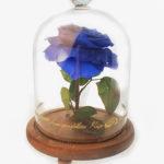 Blue Rose Preserved Flower