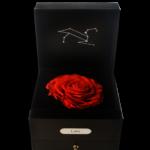 Leo Horoscope Rose preserved