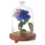 Enchanted Forever Preserved Rose in Glass Jar Blue