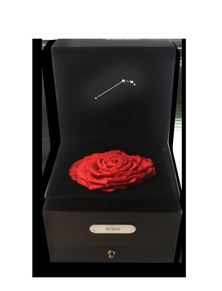 Aries Rose Box