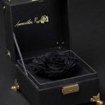 Black Preserved Rose Box by Amaranthine Rose
