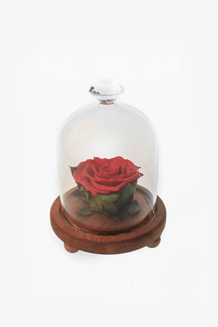 Mini Red Rose Glass Jar Gift