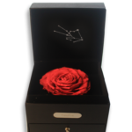 Taurus Rose Box