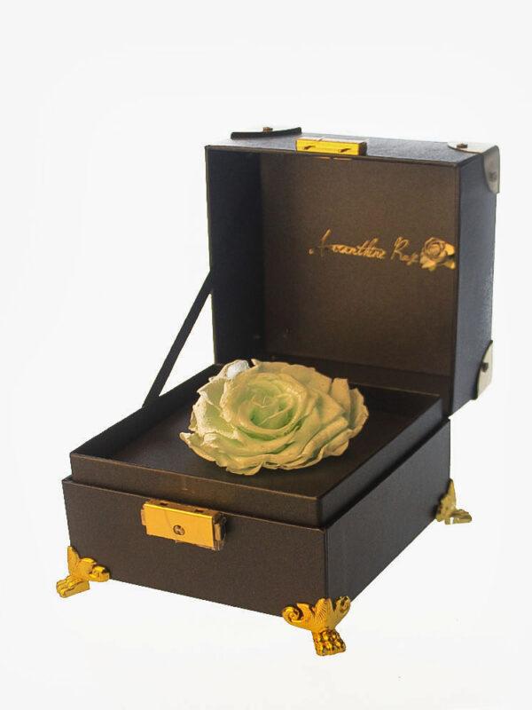 Tiffany Blue Rose Preserved Flower