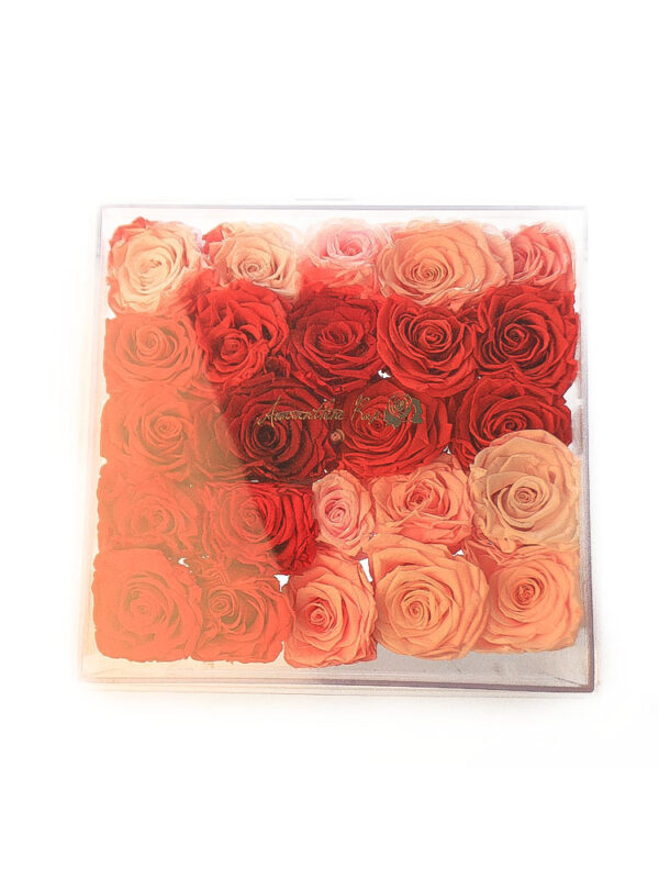 Preserved Rose in See Through Box
