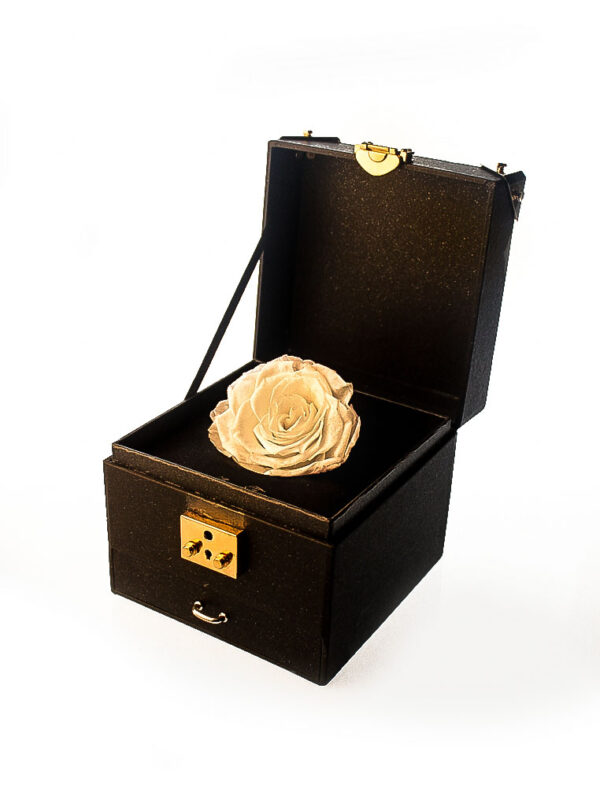 Amaranthine Rose Kuala Lumpur Rose Delivery Preserved Rose Gift for Girlfriend