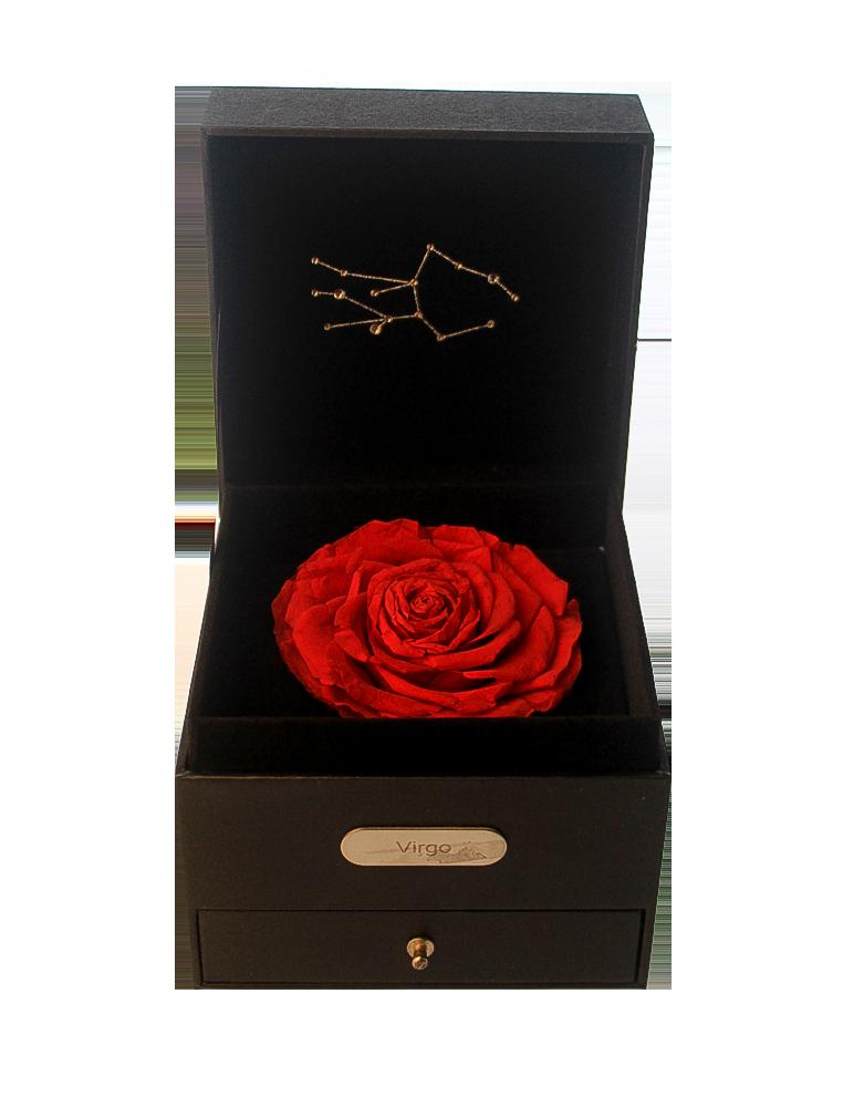Virgo Rose Delivery KL
