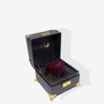 Amaranthine Rose KL Delivery