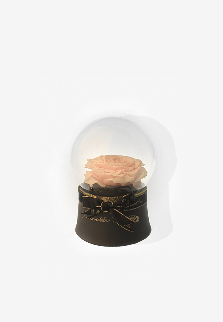 Beige Rose Glass Globe
